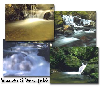 Screenshot of Streams and Waterfalls Screen Saver